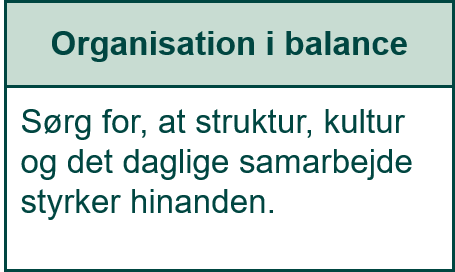 Organisation i balance